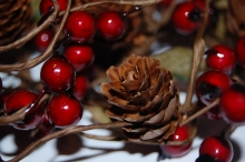 Fir cone and berries